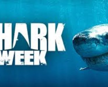 Watch Shark Week presents Will Smith: Off the Deep End 3